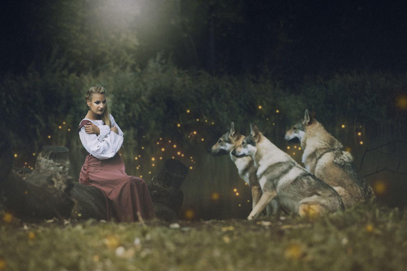 Focení s vlky